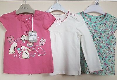 Baby Girl Eeaster Bunny Spring tshirt top 9-12 months BNWT
