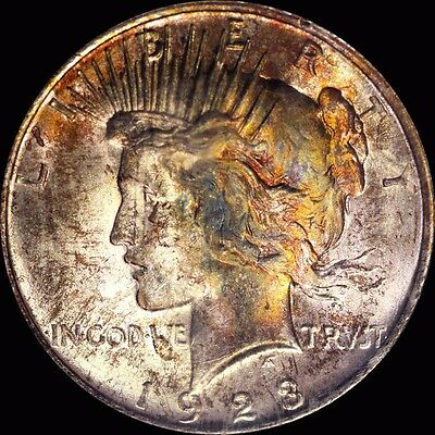 1923 Peace Dollar Ngc Ms 64 Cac Toned