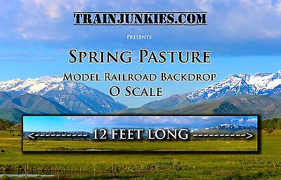 "TrainJunkies O Scale ""Spring Pasture""  Backdrop  24x144"" C-10 Mint-Brand New"