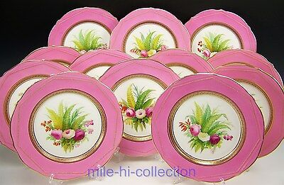 12 Pieces Old English Pink Handpainted Botanical Rose Cabinet Plates Raised Gold