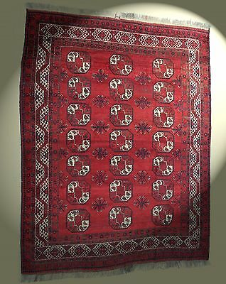 Afghan Teppich 315x243 cm rot 100% Wolle! rug Tapis Tappeto alfombra red hadmade