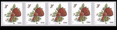 2017 Strawberries PNC5 #P11111 - MNH (Ships after May 12th)