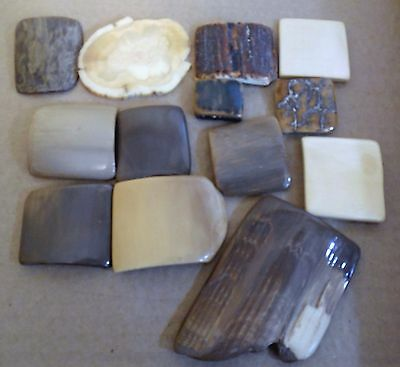 13 pcs 20,000 yr old Mammoth Polished Pieces for Pistol or Knife grips; jewelry