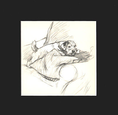 Sealyham Terrier Dog by G. Vernon Stokes 1936 Dry Point Matted Print LG 12x12