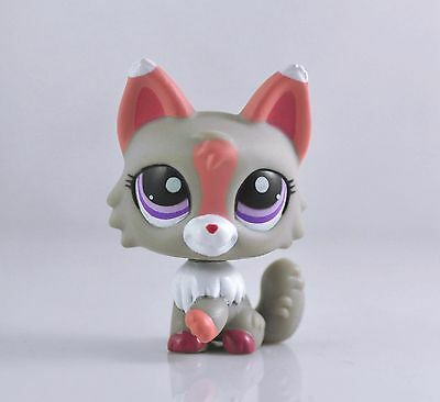 Littlest Pet Wolf Dog Collection Child Girl Boy Figure  Toy Loose LPS05