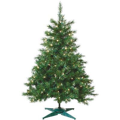 Sterling 2'P/L Colrad Spruce Tree
