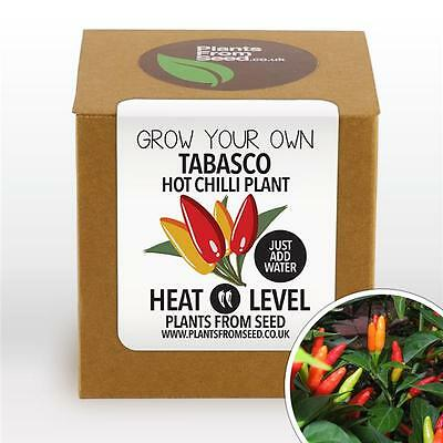 Plants From Seed - Grow Your Own Tabasco Chilli Plant Kit