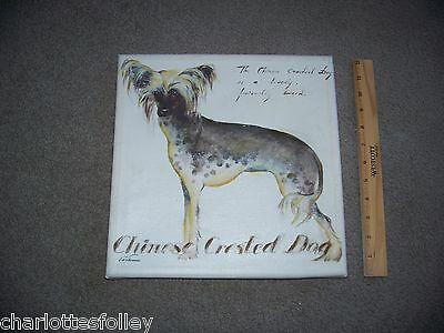"""CHINESE CRESTED HAIRLESS DOG PAINTING ON CANVAS 12"""" SQUARE ready to hang"""