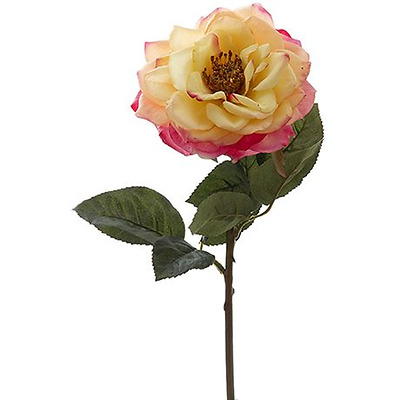 NEW Gold/Pink ROSE 30cm stem By Freedom