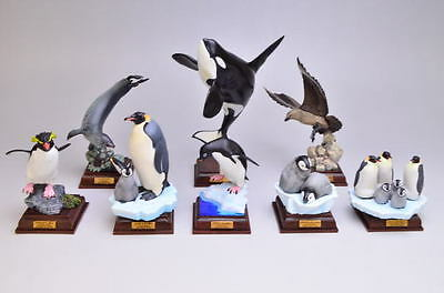 Kitan Nature Technicolour Antarctica South Pole complete set of 8 penguin orca