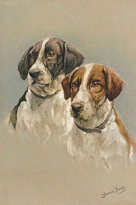 Pointer Dogs Portrait by Fanny Moody 1861-1948   LARGE New Blank Note Cards