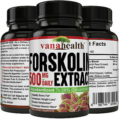 100% Pure Forskolin 500mg Max Strength Forskolin Extract Supplement Weight Loss