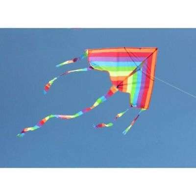 30m Rainbow Kite Outdoor Flying Fun Sports Kite Children Toys Triangle With Line