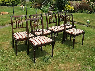 Mahogany Dining Chairs with Regency Seats - set of 6