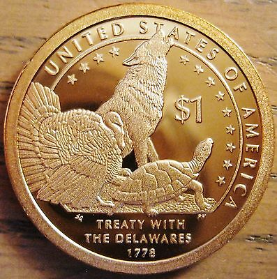 2013-s Cameo Proof Native American Dollar - One Like Those Shown