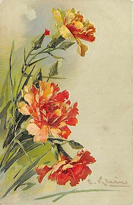 POSTCARD   FLOWERS    CARNATIONS          Klein