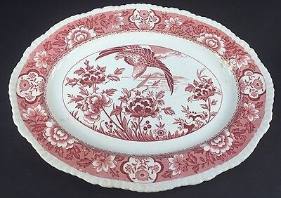 Antique Wood & Son oval serving platter in Aquila pink pattern 12 inches.