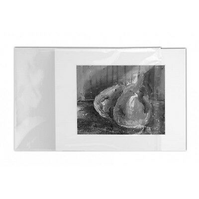 25pack - 16x22cm (A5+) Acid Free Print Sleeves for Archival