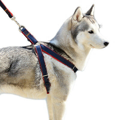 Anti-Pull Dog Harness Walking Leash Set Lead With Handle Anti Pull Train Dogs