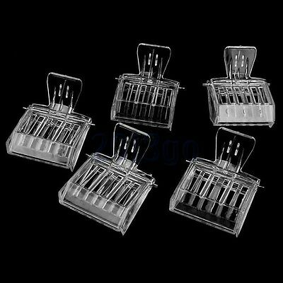 5pc l'apiculture clip Queen Bee catcher captures cage piège Apiculteur Outil HG