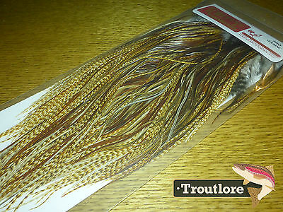 Whiting Dry Fly Saddle Dark Barred Ginger Pro Grade New Fly Tying Cape Feathers