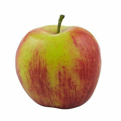 NEW Red APPLE By Freedom