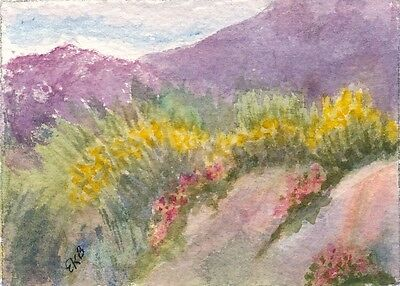 ACEO Original Watercolor Art Card Miniature by Eileen Landscape Grasses Spring