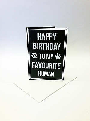 Happy Birthday to my Favourite Human! - A6 card, pet lover, cat lady, dog