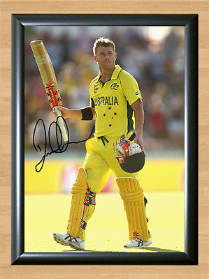 David Warner Cricket World Signed Autographed A4 Poster Photo Print Memorabilia