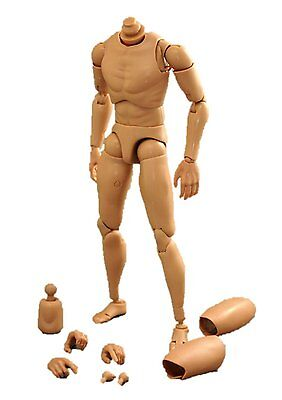 1/6 male body posable Action figure Sketch From Japan F/S (S)