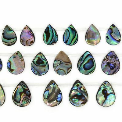 14-18mm Abalone shell teardrop loose  beads 16""