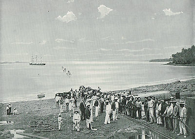 Landing The Great Cable At Port Darwin, Australia 1899 Antique Print #011