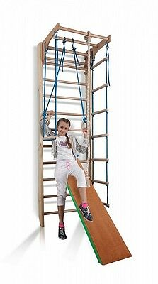 Wall Bars Home gym for kids Gymnastic Climbing Swedish Ladder Playground