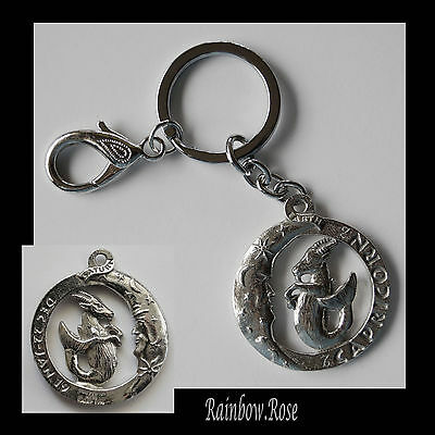 ZODIAC Keyring Pewter CAPRICORN Dec 22 - Jan 19 (40mm) Star Sign Key Chain