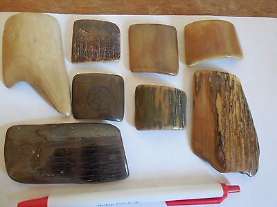 8 pieces 20,000 yr old Mammoth POLISHED for jewelry, pistol or knife grips..Wow!