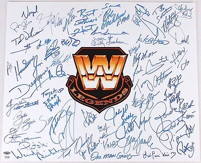 Roddy Piper Shawn Michaels Bret Hart +50 WWE Legends Signed 20x24 Photo PSA/DNA