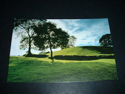 N.IRELAND  POSTCARD  NAVAN FORT Co ARMAGH