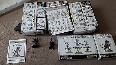 Disciples of Tzeentch Small Army - Games Workshop - Warhammer - Age of Sigmar