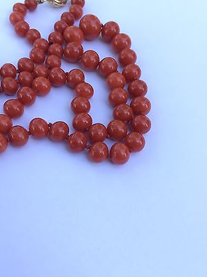 Wonderful Antiques Is Ox Blood Coral Necklace 23 In