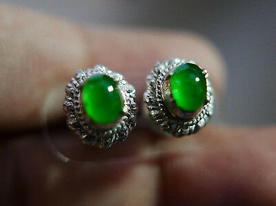 High Quality Untreated Apple Green Glassy Jadeite Jade Type A Earring Nice Color