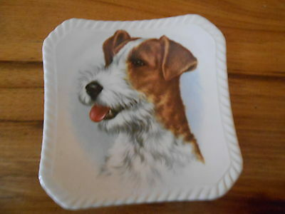 "ROYAL ADDERLEY Bone China England JACK  RUSSELL Dog Teabag Plate 4"" X 4"" Dish"
