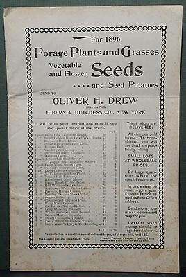 Forage Plants & Grasses For 1896, Oliver H. Drew Co., Hiberia, Dutchess Co., NY