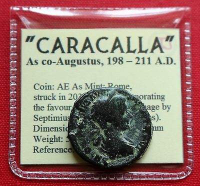 Caracalla AE As 5g 203AD Juno Lion Carthage Rome Roman Empire Coin