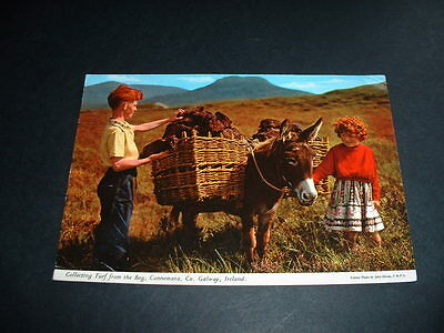 IRISH POSTCARD  GETTING TURF FROM THE BOG Co GALWAY