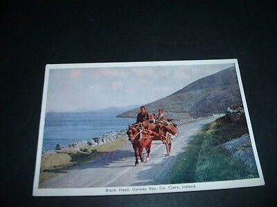 IRELAND  POSTCARD BLACK HEAD GALWAY BAY Co CLARE