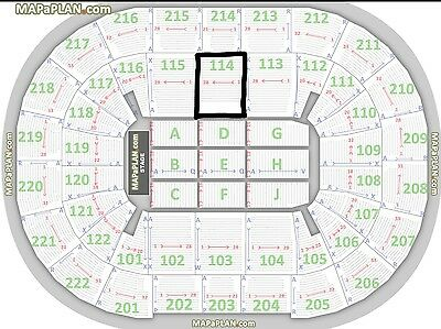 Lady Gaga seated tickets Manchester x 2 (4 available, see my other listing)