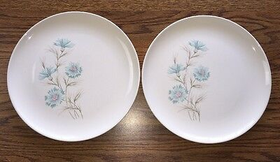 2 Vintage Taylor Smith Taylor Ever Yours Boutonniere Dinner Plates Blue Flowers