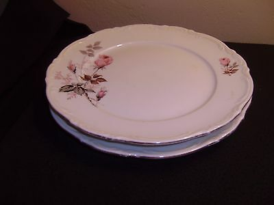 2 Vtg MITTERTEICH, Germany MIT1 Dinner Plates, with Pink Roses and Gold Trim