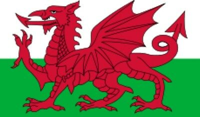 Wales flag 9ftx6ft