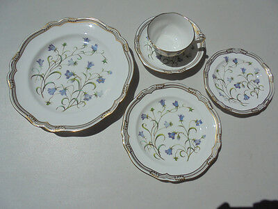 Spode Campanula 5-Piece Place Setting Excellent